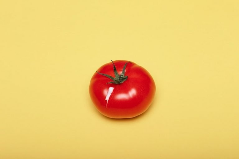 how to dice tomato lice a chef